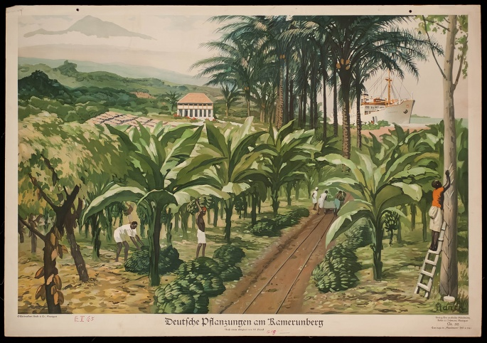 German plantations at Mount Cameroon