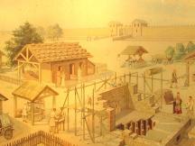 De Romeinen in ons land